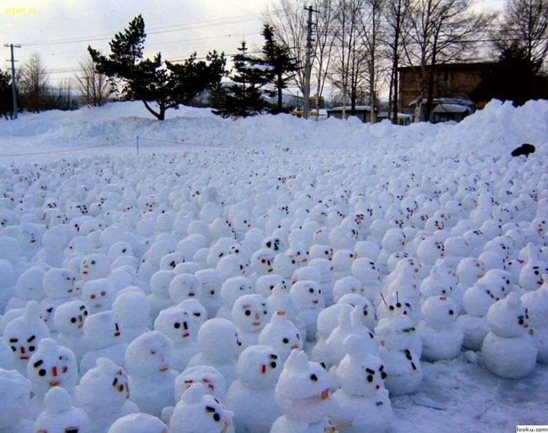 hundreds_gather_to_protest_global_warming.jpg