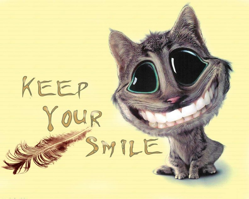 cat_keep_your_smile.jpg