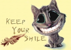 Cat _ Keep Your Smile