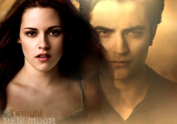 Twilight:New Moon_Bella & Edward