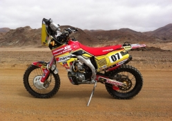 Honda CRF450 Dakar Bike