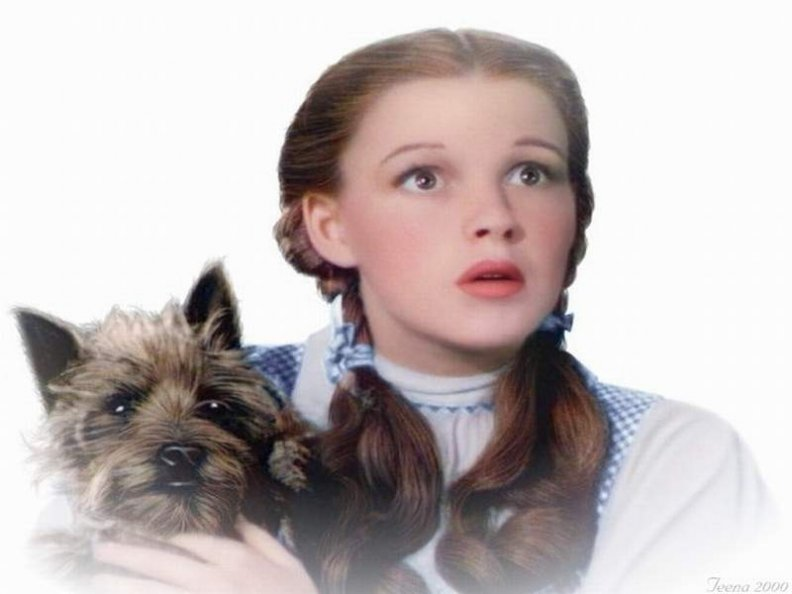 dorothy_and_toto_the_wizard_of_oz.jpg