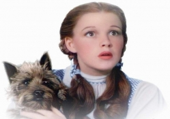 Dorothy and Toto (The Wizard of Oz)