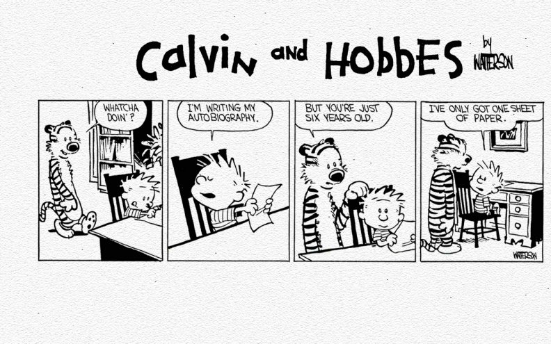 calvin_and_hobbes_autobiography.jpg