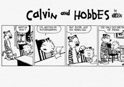 Calvin and Hobbes Autobiography