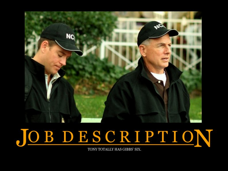 ncis_boss_gibbs_and_tony.jpg