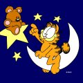 garfield pookie moon