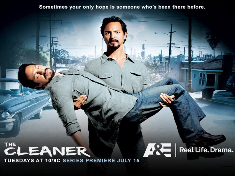 the_cleaner_01.jpg