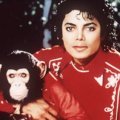 Michael Jackson & Bubbles
