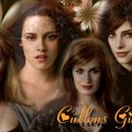 twilight _ cullens girls