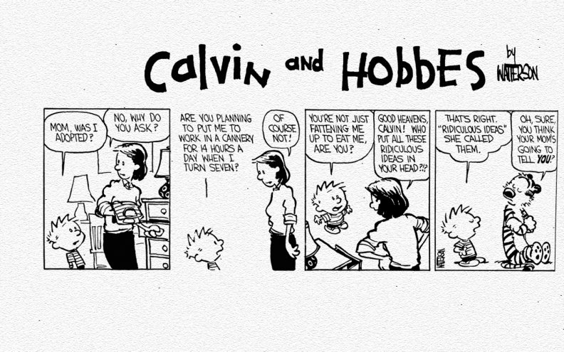 calvin_and_hobbes_quotridiculous_ideasquot.jpg
