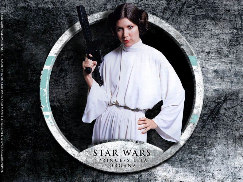 star_wars_leia.jpg