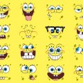 spogne bob faces