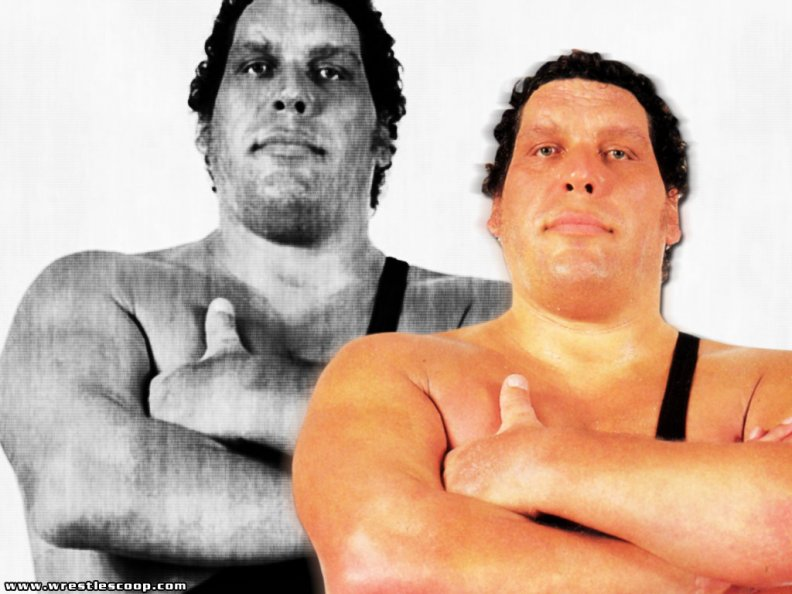 andre_the_giant.jpg