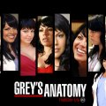 Greys Anatomy Callie