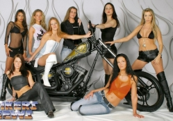 Costom Chopper & Models