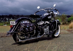 Old Indian Chief Rear_Side Angle