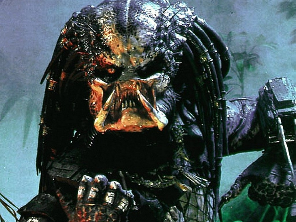 Predator download hd wallpapers and free images voltagebd Choice Image